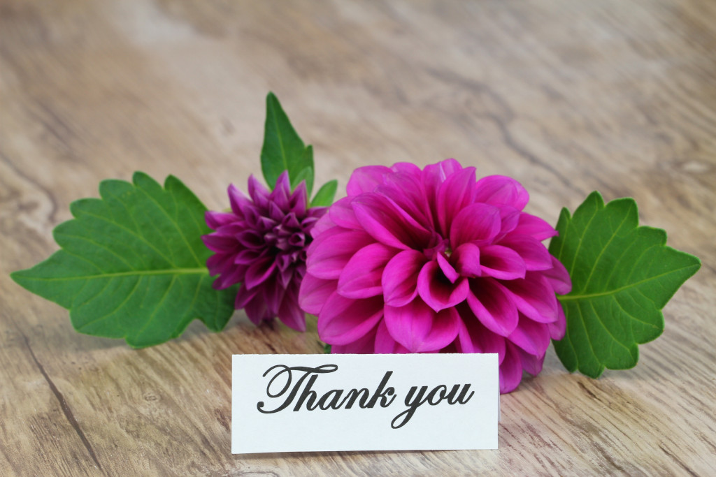 Thank You note on pink dahlia
