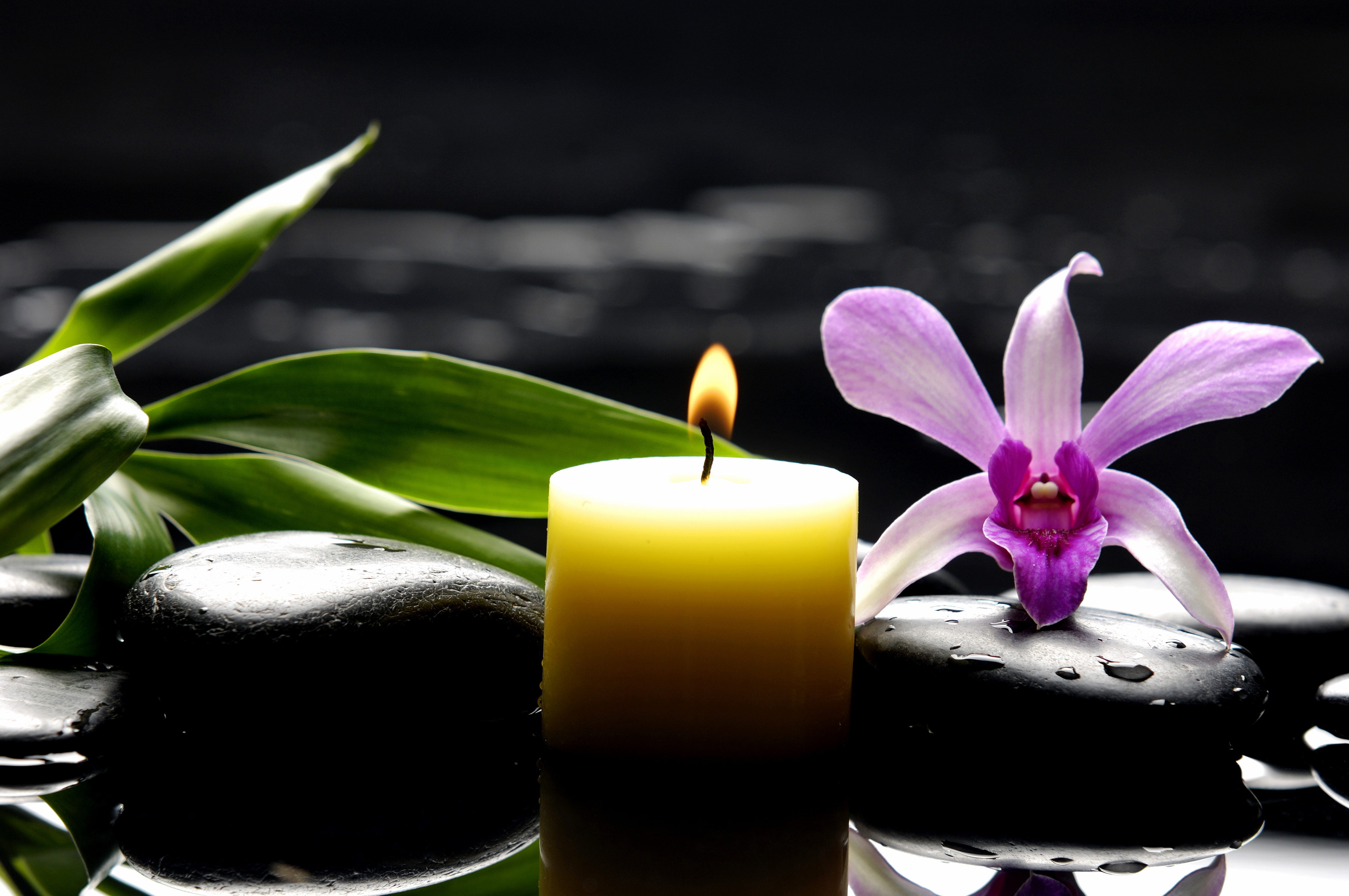 Black rocks, lit candle, and purple orchid on water